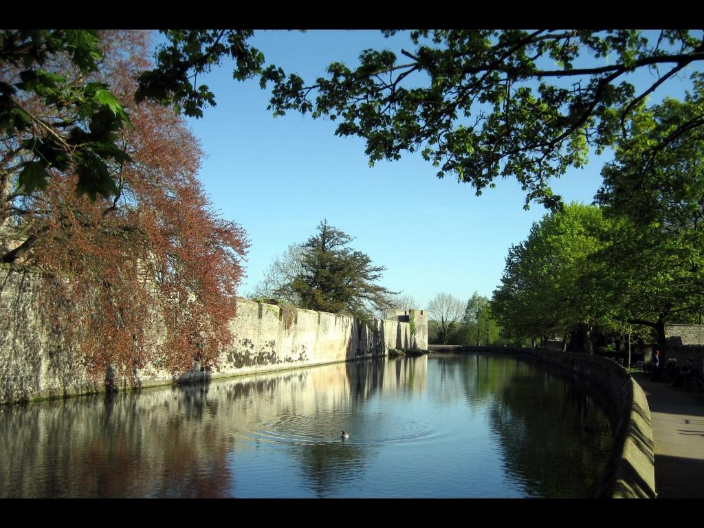 049_tribattle_landscape_languid-afternoon-jpg