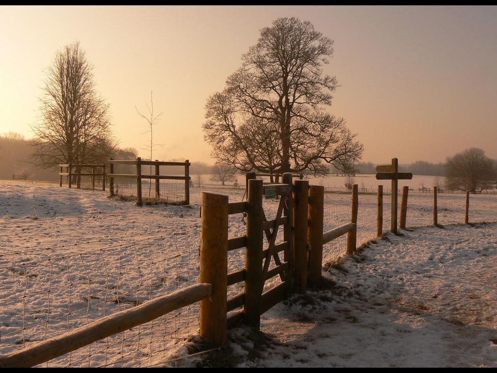 029_weather_snowy-walk-jpg