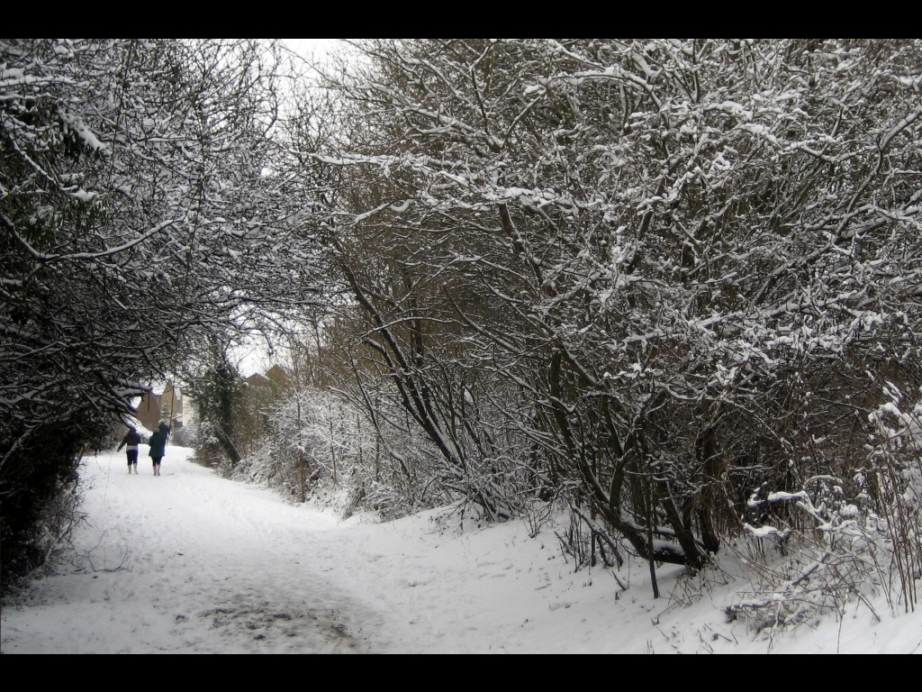 049_tribattle_weather_cold-trail-jpg